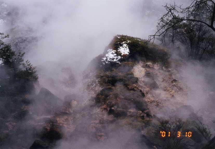 ユオウゴケ (イオウゴケ) Cladonia vulcani Savicz